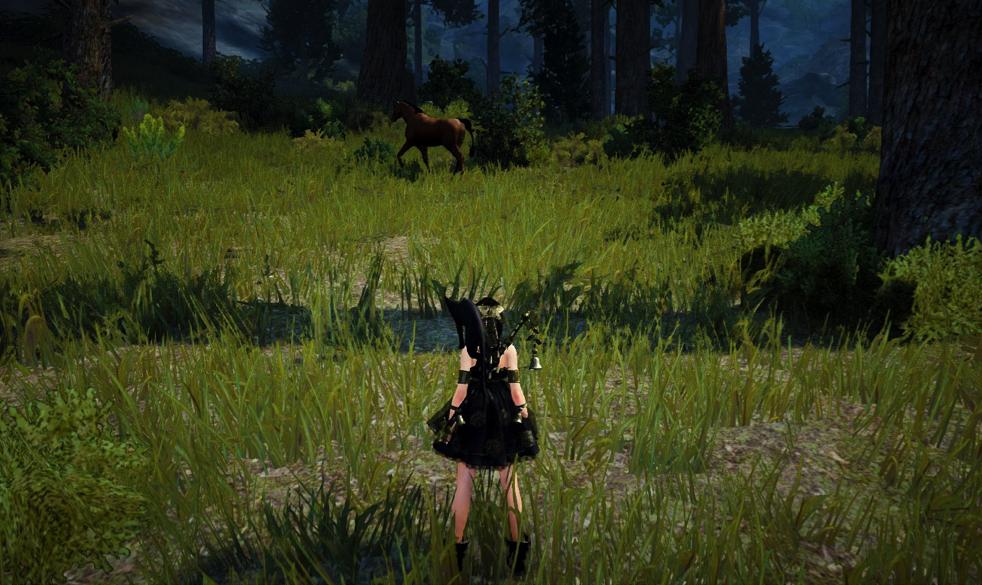 Ловля лошади в Black Desert: практика 2